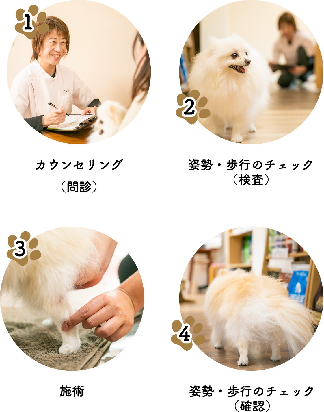 1カウンセリング(問診)2姿勢・歩行のチェック(検査)3施術4姿勢・歩行のチェック(確認)