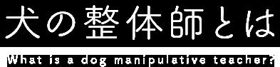 犬の整体師とは What is a dog manipulative teacher?